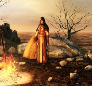 Темные души 2 — Дорога к Синионскому бастиону грешников
